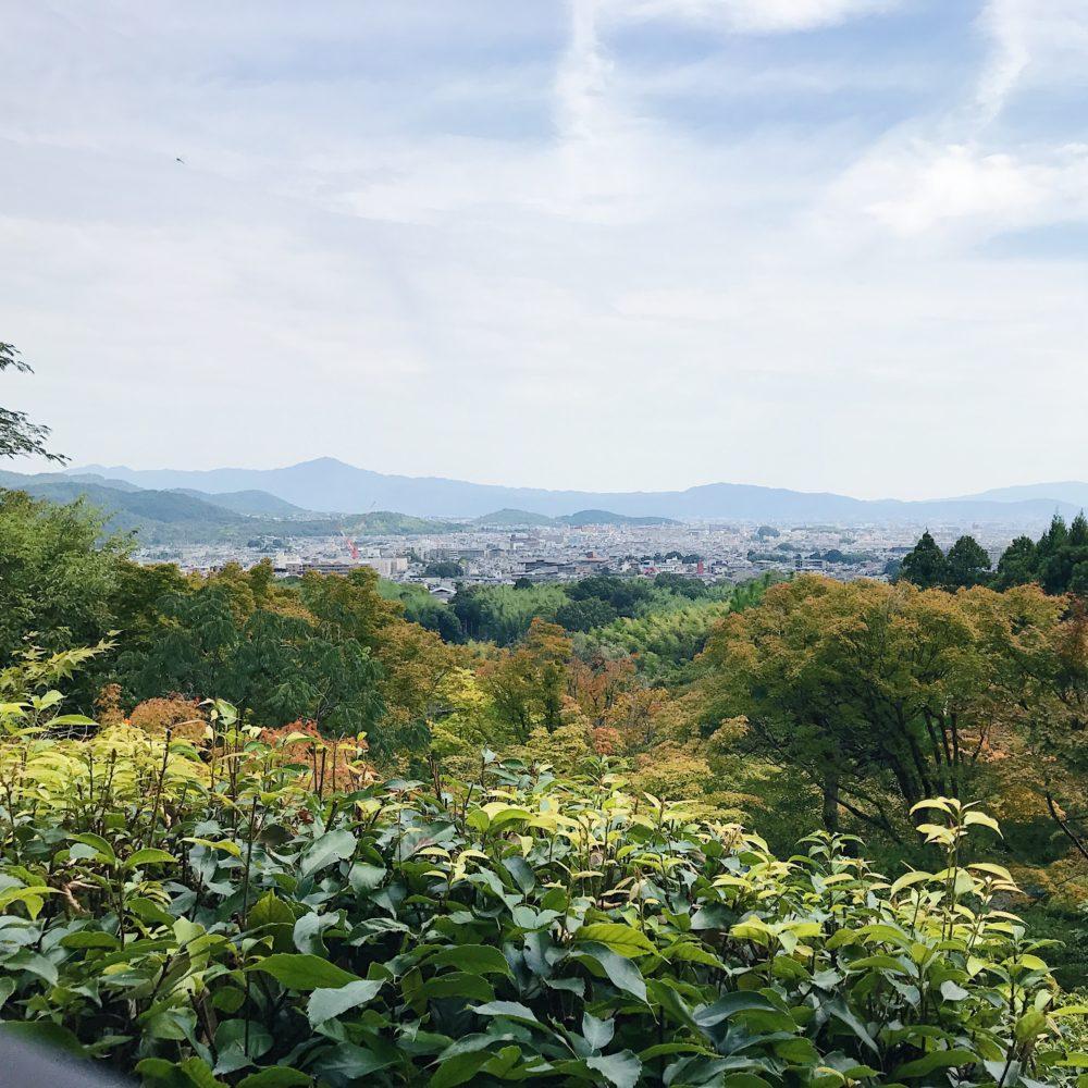 View from the top of Ōkōchi Sansō (大河内山荘)